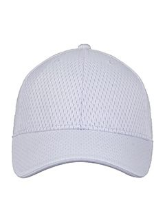 Retro Mesh Cap-Champion Accessories
