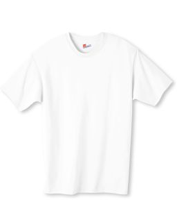 Mens 6 Oz. Authentic-T T-Shirt-
