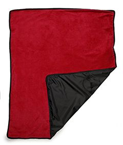 Picnic Blanket-UltraClub