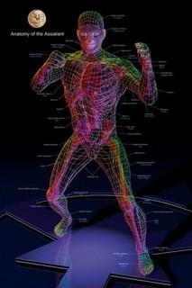 1226 Anatomy Training Posters-