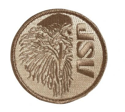 Coyote Patches - ASP Eagle-
