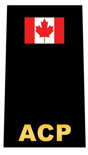 EMS Epaulette Pair-Derks Uniforms
