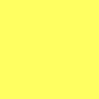 Fluorescent Lime/Yellow