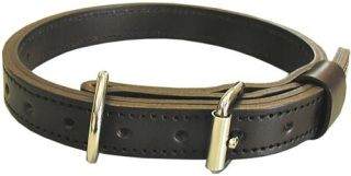 "1"" Collar-Boston Leather"