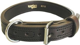 "1 1/4"" Collar-Boston Leather"