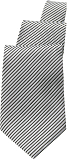 TPAS Striped Tie