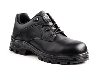 Buckler Composite Toe Boot-Dickies Industrial