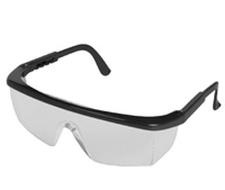 Sting-Rays Black frame, Clear Anti-Fog lenses-