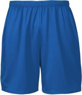 Men's Training Shorts-