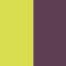 Eggplant/Plant