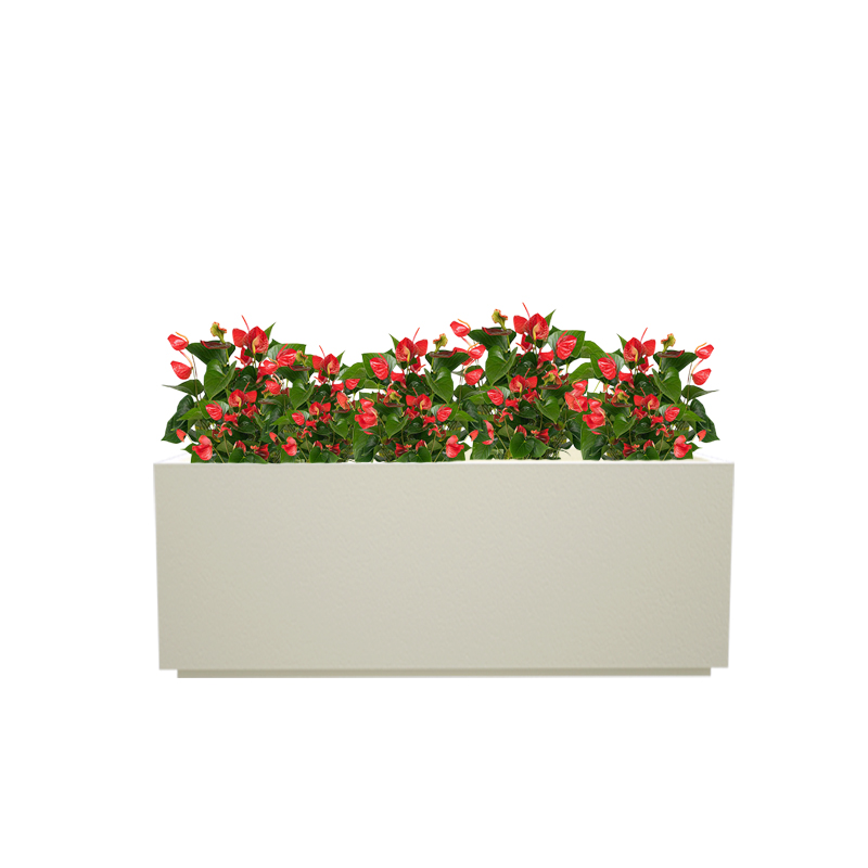 Cream White Box tray 24x13 inches rectangular planter