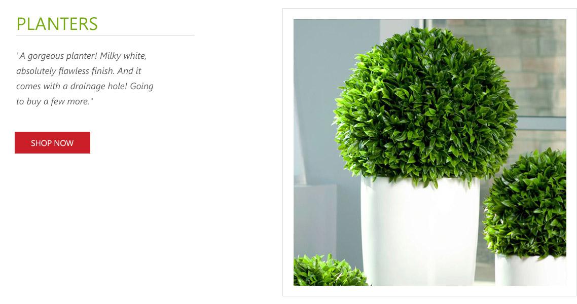 planters-1101229.jpg