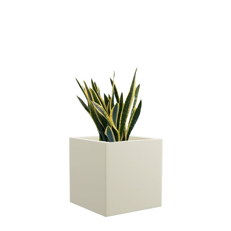 Cream White BAR 8 Inches Square Planter