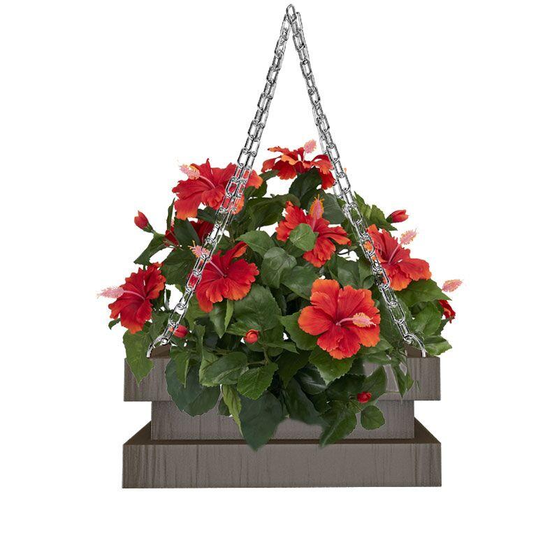 Wenga Vipu Ceiling Hanging Planters