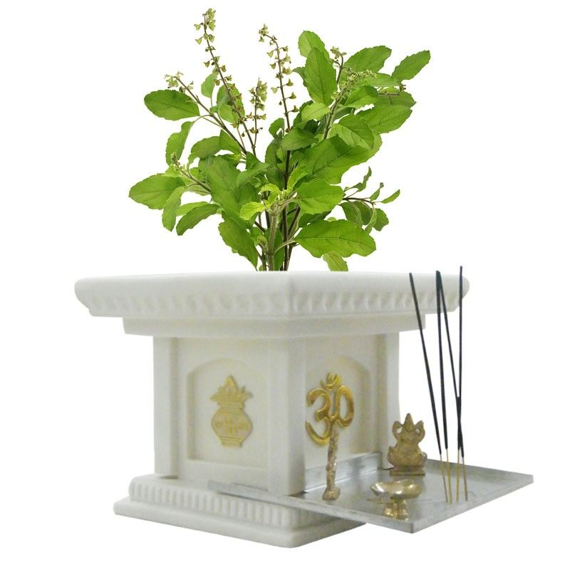 Creame White 10 Inches Tulsi Planter
