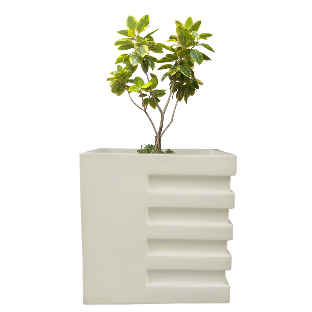 Cream White Square 14 Inches Vipu Planter